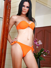 Hot asian shemale solo posing in orange bra and panties