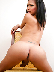 Horny brunette ladyboy stroking her dick