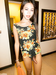 Ladyboy Bareback and Facial