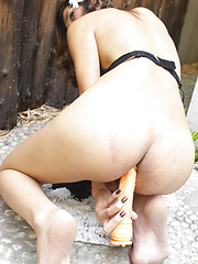 Yada in the Yard