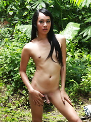 Filipino ladyboy stripping in a forest to flash her hard cock and her willing butt