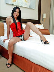 Ladyboy rubs huge bulge in her bikini