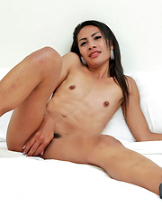Cute Thai ladyboy jerks her hairy cock
