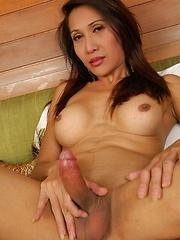 Ladyboy lust with tgirl Pim