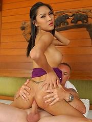 Sexy Shemale babe Paula
