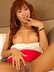 Thai Ladyboy Taylor shows cock